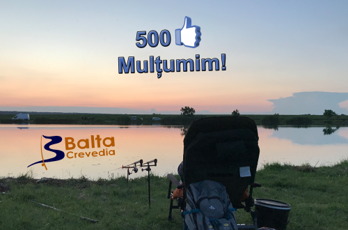 500 like Balta Crevedia